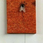 Fly, idioms, sayings, wall, metal wire, fly on the wall, magnets
