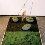 Sailing boats, grass, soil, growth, movement, installation