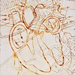 Heart, anatomy, drawing, lines, maps, street map, the way