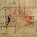 anatomy, street map, map, cells, layers, head, brain cells,